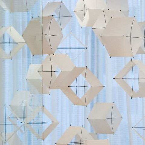 Stuart Allen - <strong>35 Box Kites: each 398 cubic inches, the volume of air I breathe in one minute at rest</strong>, 2009, sailcloth, fiberglass, string