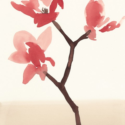 Stacey Vetter - <b>Red Magnolia</b>, watercolor on paper, 10 x 8 inches