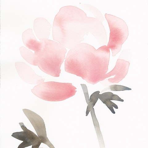 Stacey Vetter - <b>Pink Peony</b>, watercolor on paper, 10 x 8 inches