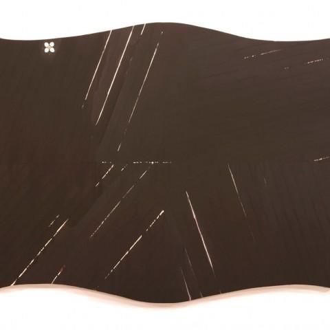 Richard Martinez - <b>Assellus</b>, 2010, oil on shaped canvas, 44 x 72 x 2 inches
